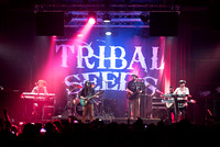 Tribal Seeds - Winter Roots Tour January 24th